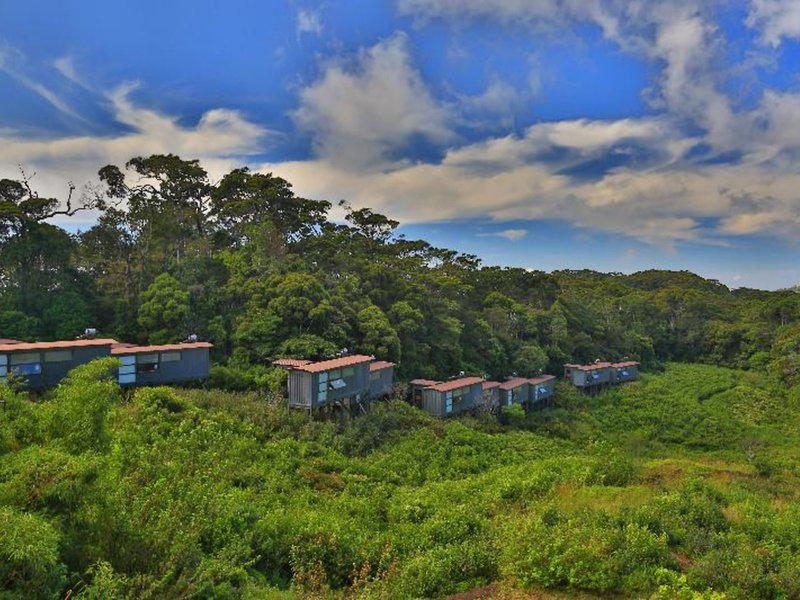 Rainforest Ecolodge
