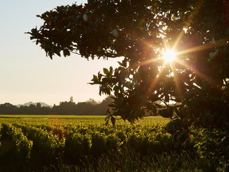 Grand Barrail Chateau Hotel & Spa