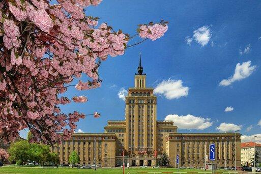 International Prague